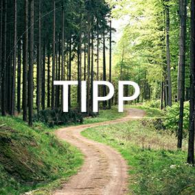 Mit dem symbolischen Kauf eines Stückchen Waldes bekommen Sie als umweltbewusste Urlauber oder Kapitalanleger die Chance, sich mit der Waldaktie am Entstehen des Waldes zu beteiligen und Ihren Urlaub damit CO2-neutral zu gestalten.